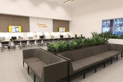 Can a greener workplace affect productivity?